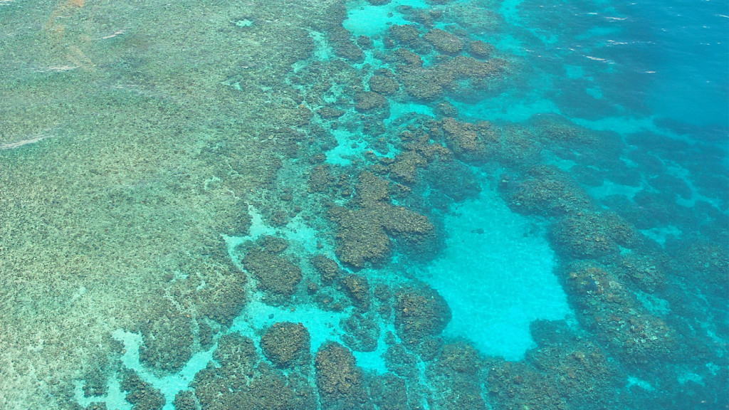 things to do in australia - great barrier reef