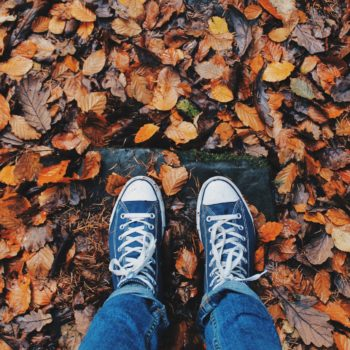 shoes leaves