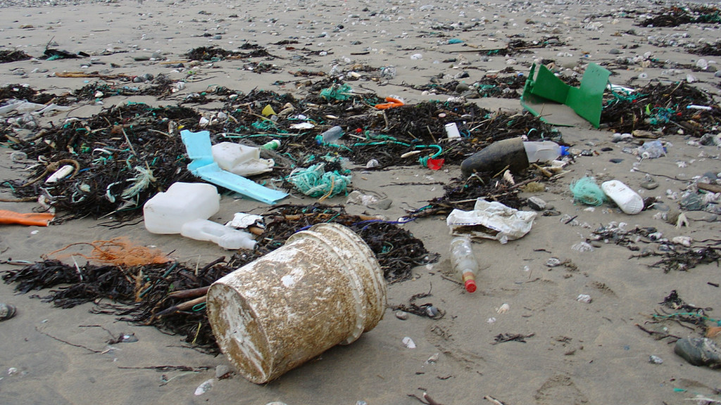 Ways to lead a greener life - image of litter on a beach