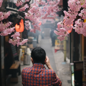 Image of a photographer taking a picture on a cherry blossom filled street