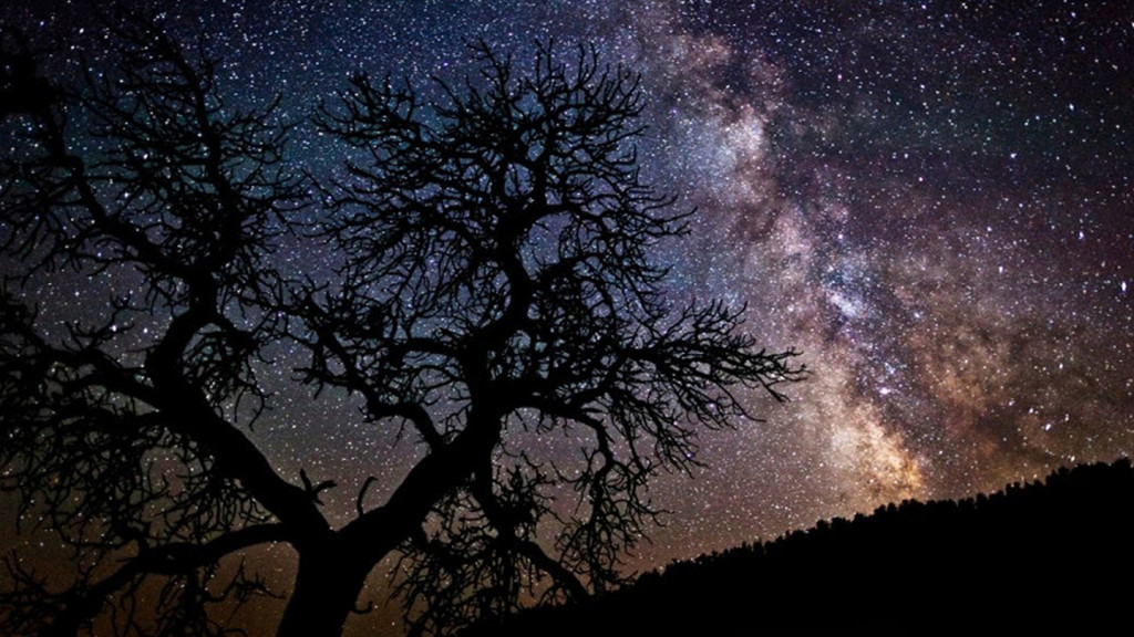 Image of the starry sky