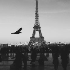 black and white image of the Eiffel Tower