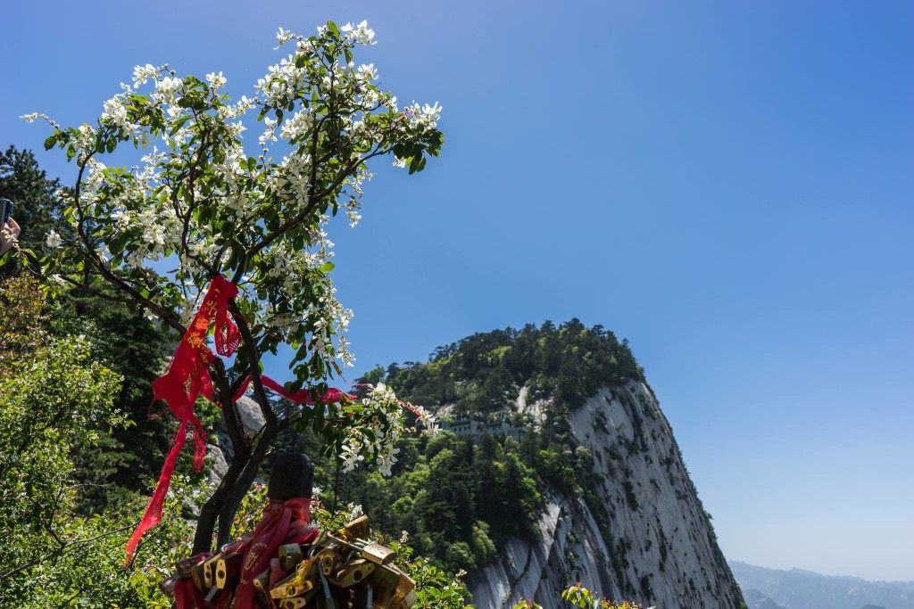 worlds most dangerous hike - Image of Mount Hua