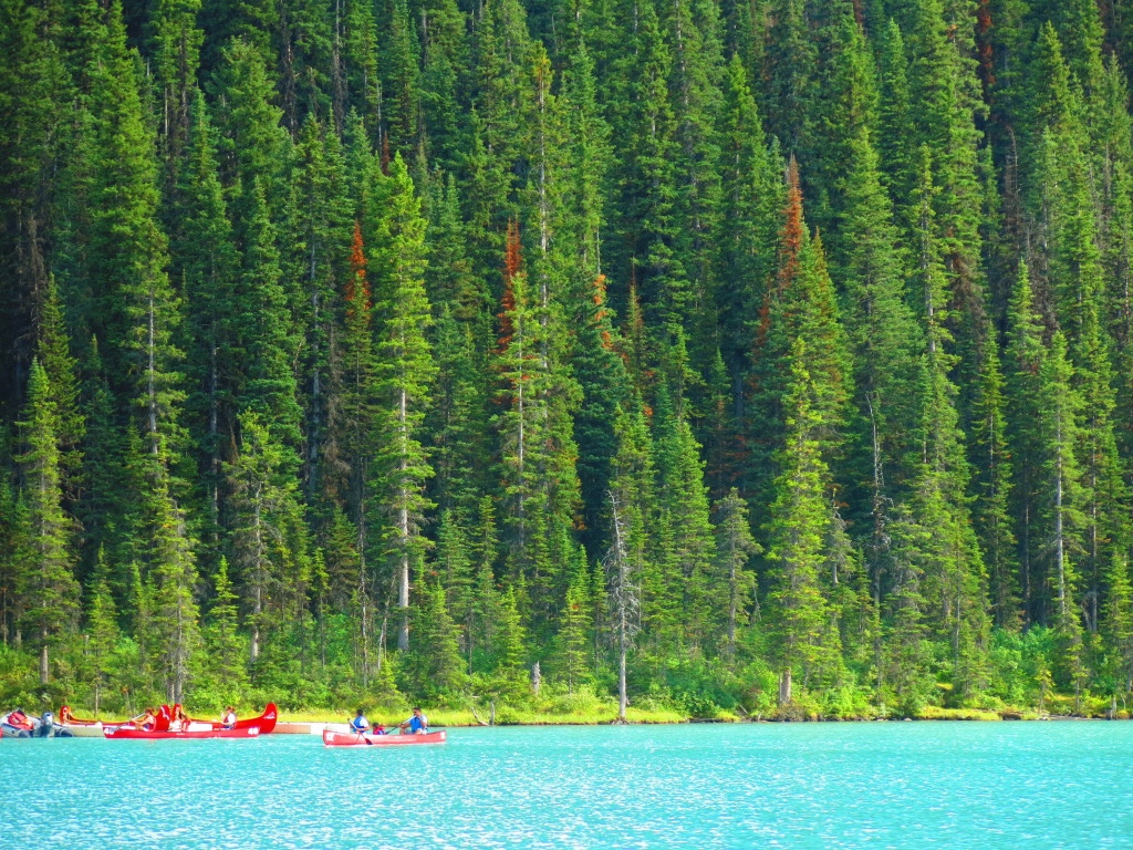 Image of lake in Canada