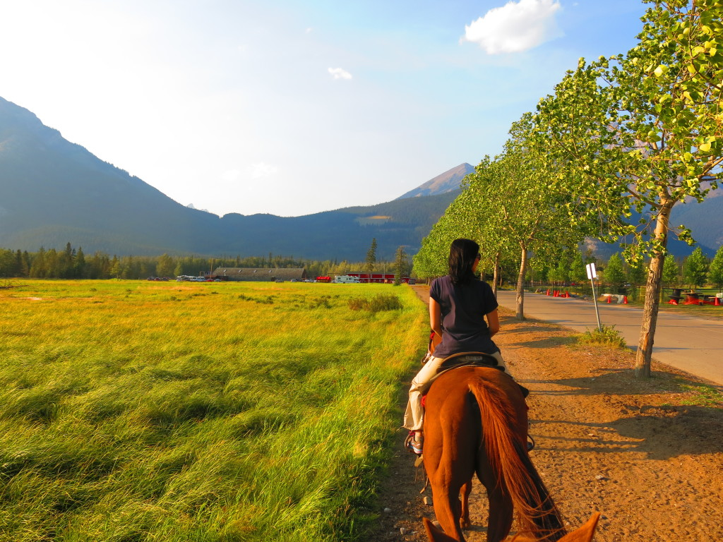 Canada and the rockies - Banff horseriding