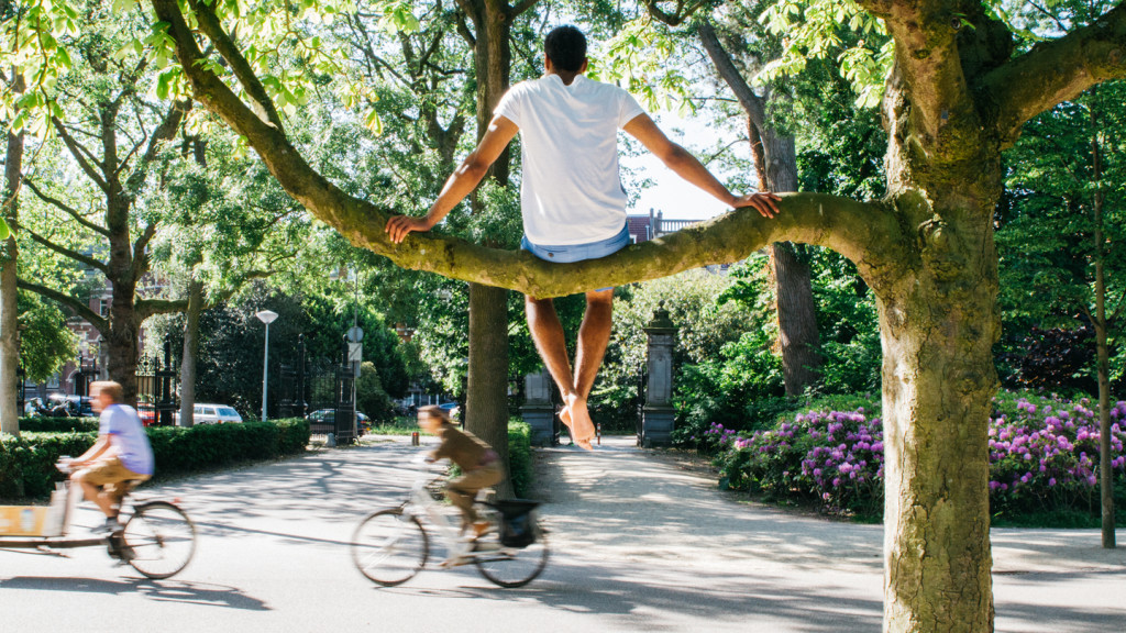 travel photography - guy sitting on tree in amsterdam
