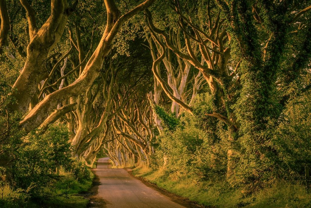 Tourism Ireland / Game Of Thrones