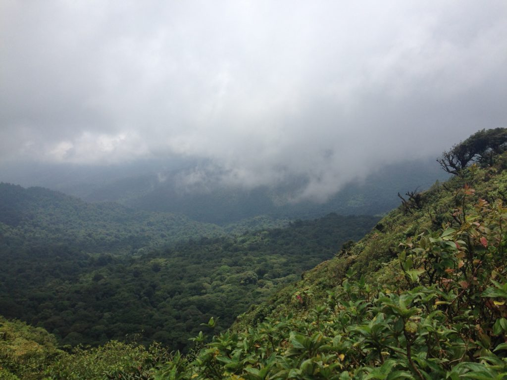 Costa rica landscape sustainable living
