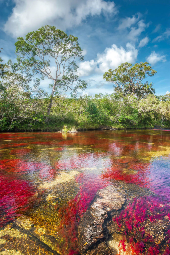 rainbow-river-colombia