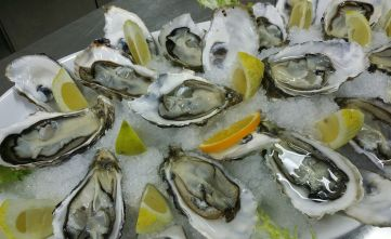 galway-oyster-festival
