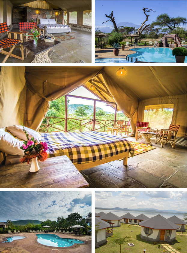 unique-accommodation-contiki-africa