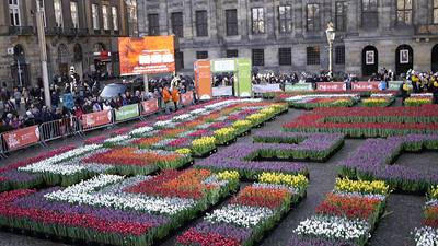 amsterdam-national-tulip-day