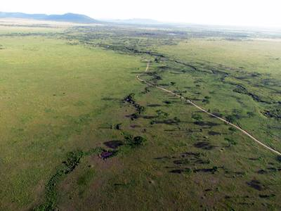 aerial-view-of-the-serengeti