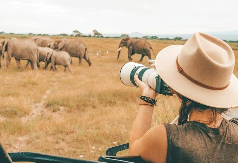 conitki-destinations-africa-middle-east-elephant-safari
